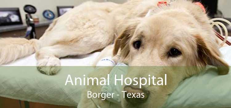 Animal Hospital Borger - Texas
