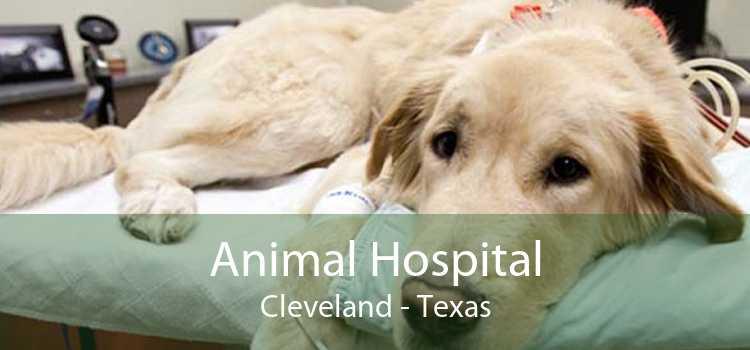 Animal Hospital Cleveland - Texas