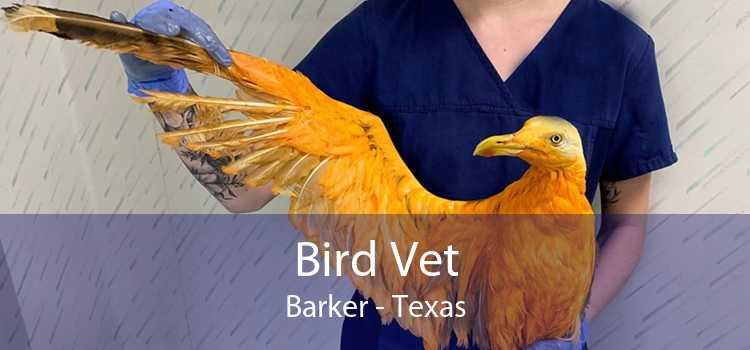 Bird Vet Barker - Texas
