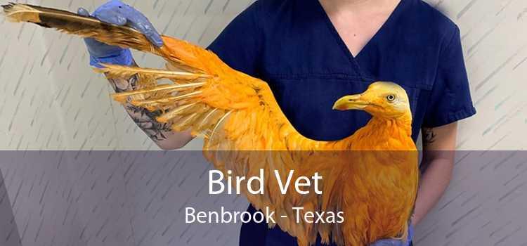 Bird Vet Benbrook - Texas