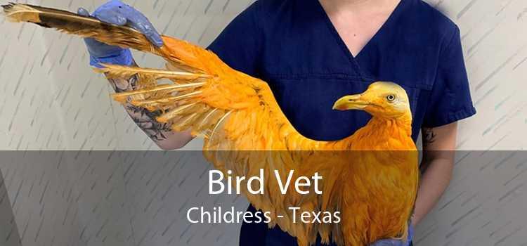 Bird Vet Childress - Texas