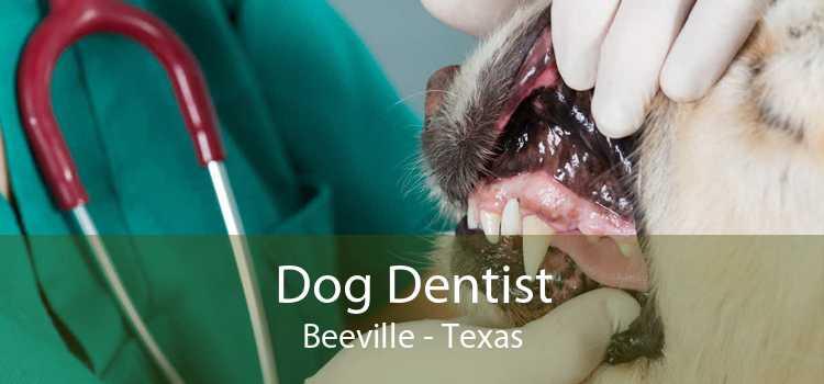 Dog Dentist Beeville - Texas