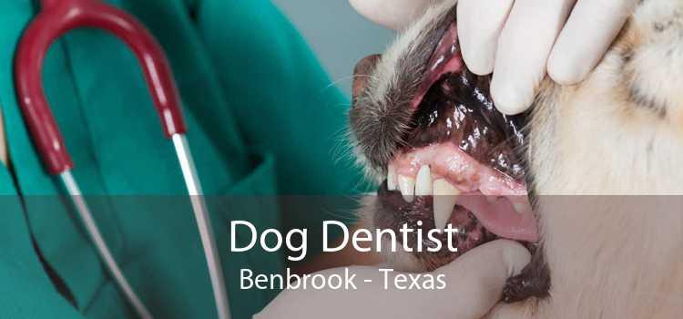 Dog Dentist Benbrook - Texas