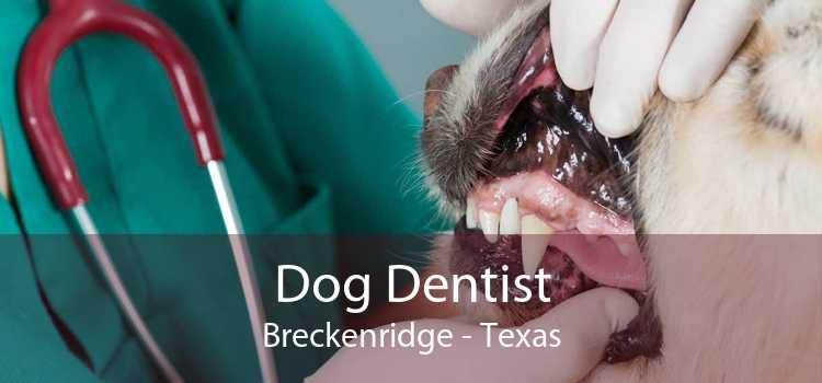Dog Dentist Breckenridge - Texas