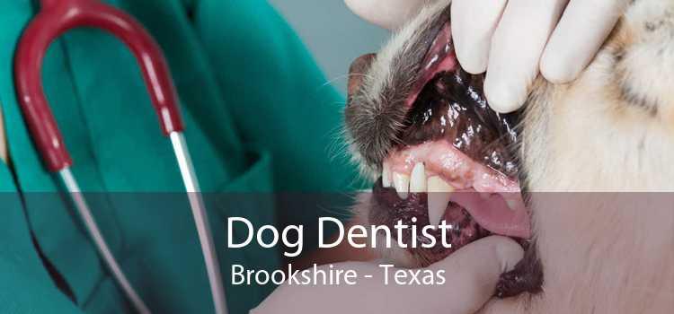 Dog Dentist Brookshire - Texas