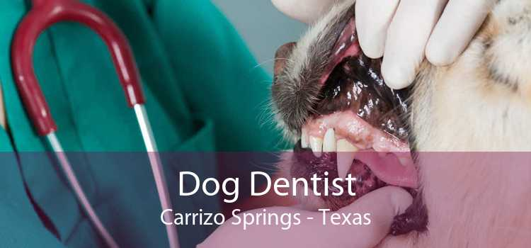 Dog Dentist Carrizo Springs - Texas
