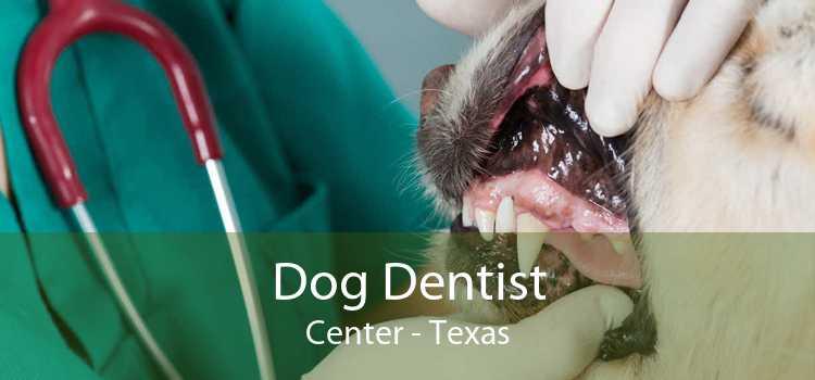 Dog Dentist Center - Texas