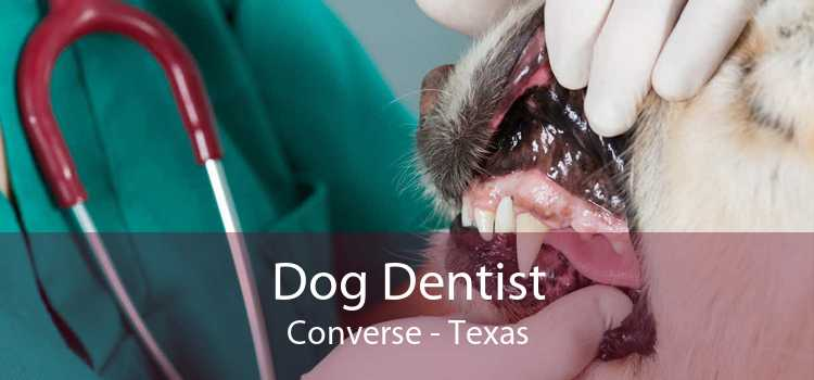 Dog Dentist Converse - Texas