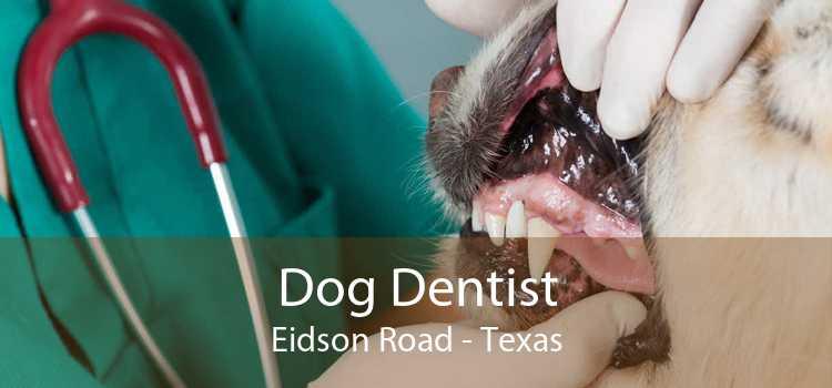 Dog Dentist Eidson Road - Texas