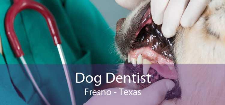 Dog Dentist Fresno - Texas