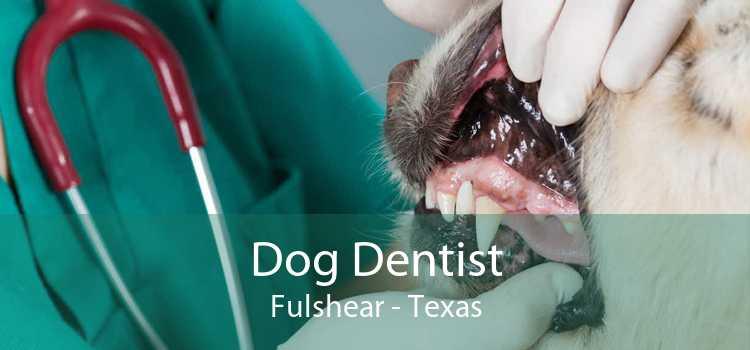 Dog Dentist Fulshear - Texas