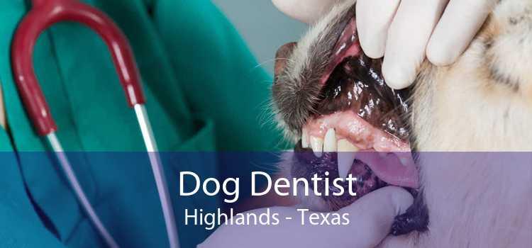 Dog Dentist Highlands - Texas