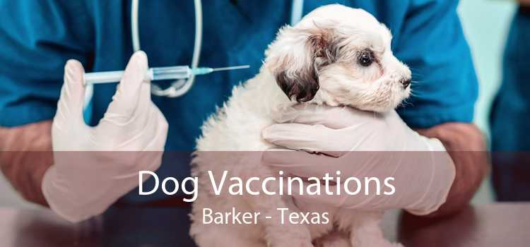 Dog Vaccinations Barker - Texas