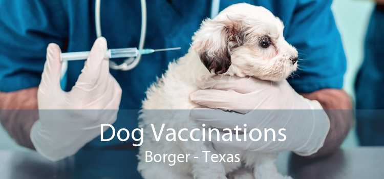 Dog Vaccinations Borger - Texas