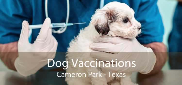 Dog Vaccinations Cameron Park - Texas