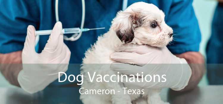 Dog Vaccinations Cameron - Texas