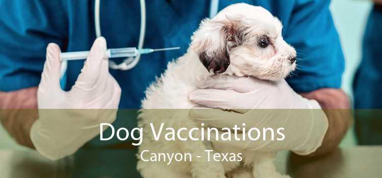 Dog Vaccinations Canyon - Texas