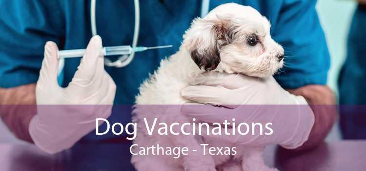 Dog Vaccinations Carthage - Texas