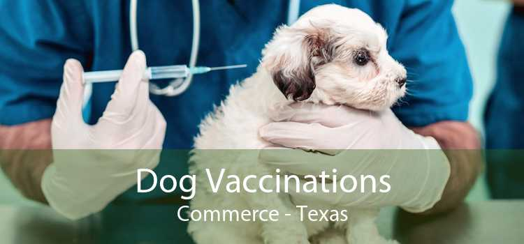 Dog Vaccinations Commerce - Texas