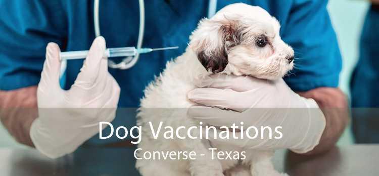 Dog Vaccinations Converse - Texas
