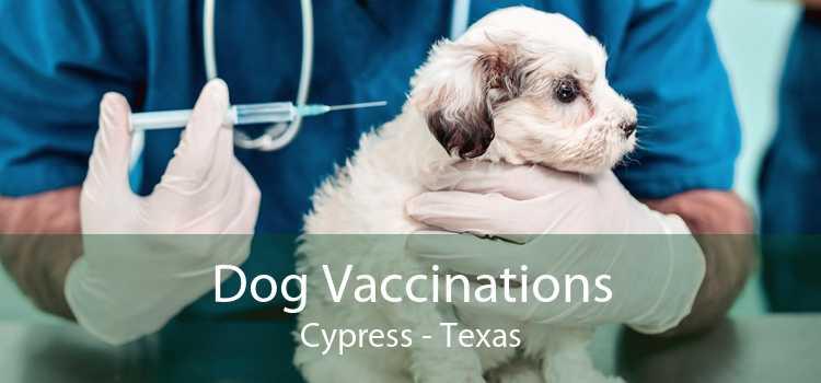 Dog Vaccinations Cypress - Texas