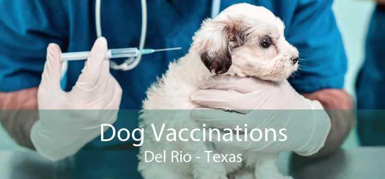 Dog Vaccinations Del Rio - Texas