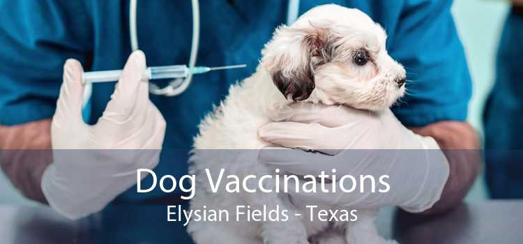 Dog Vaccinations Elysian Fields - Texas