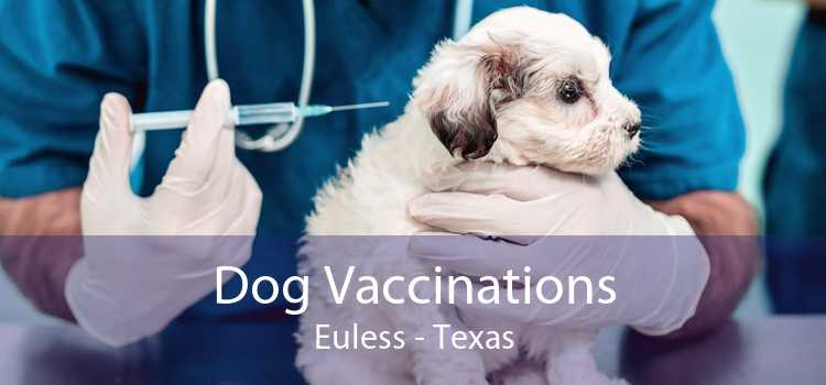 Dog Vaccinations Euless - Texas