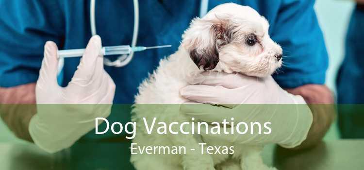 Dog Vaccinations Everman - Texas