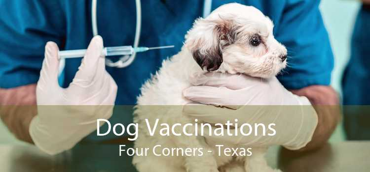 Dog Vaccinations Four Corners - Texas