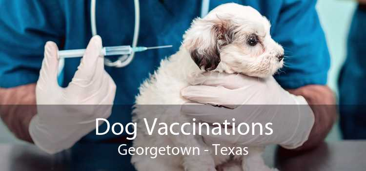Dog Vaccinations Georgetown - Texas