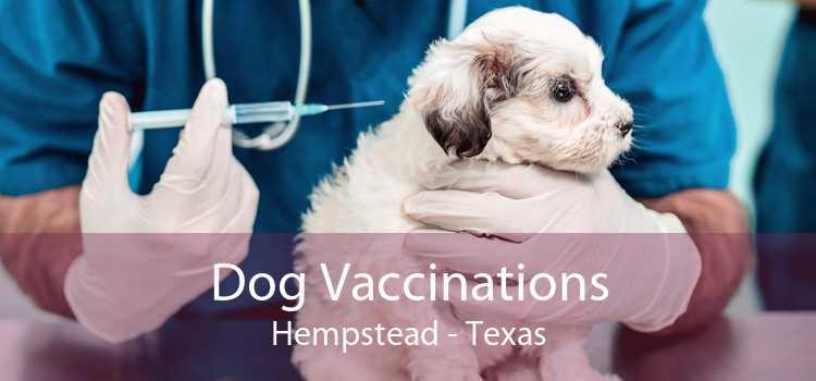 Dog Vaccinations Hempstead - Texas