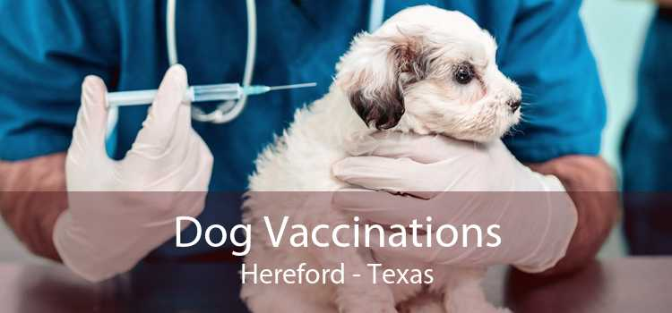 Dog Vaccinations Hereford - Texas