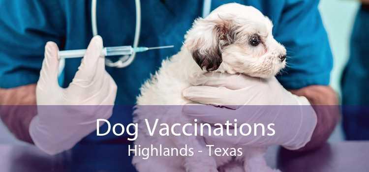Dog Vaccinations Highlands - Texas