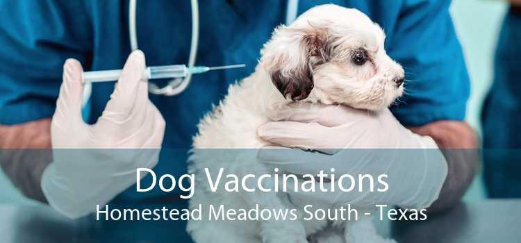 Dog Vaccinations Homestead Meadows South - Texas