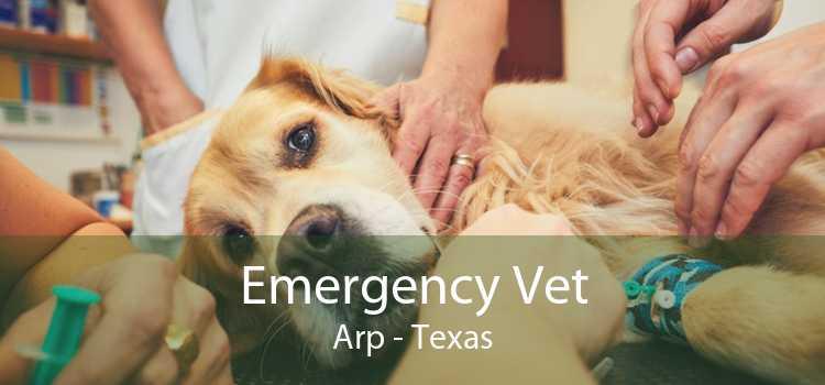 Emergency Vet Arp - Texas