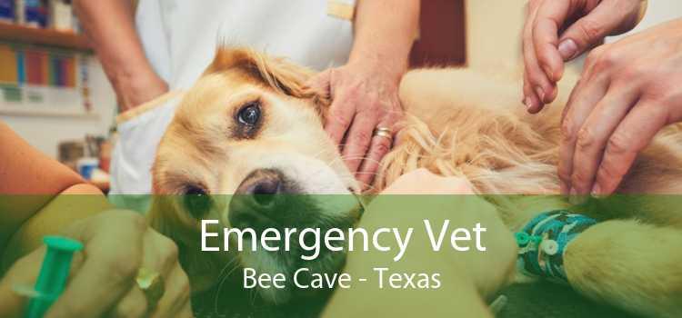 Emergency Vet Bee Cave - Texas