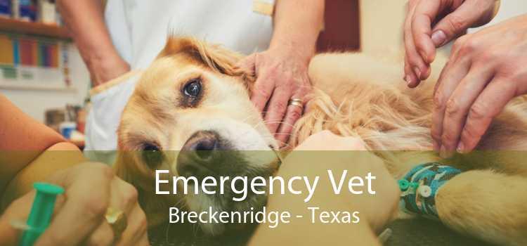 Emergency Vet Breckenridge - Texas