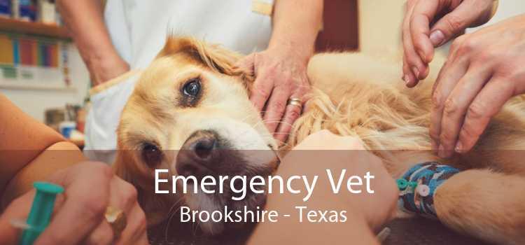 Emergency Vet Brookshire - Texas