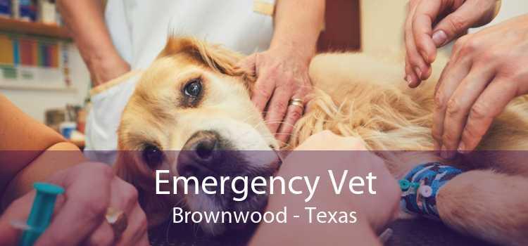Emergency Vet Brownwood - Texas