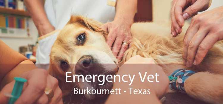 Emergency Vet Burkburnett - Texas