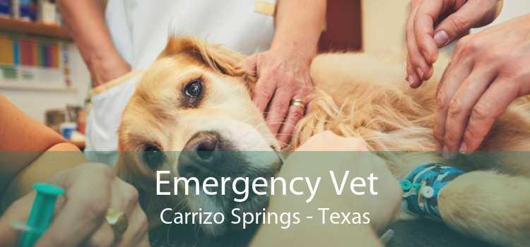 Emergency Vet Carrizo Springs - Texas