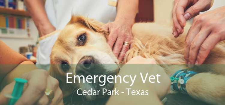 Emergency Vet Cedar Park - Texas