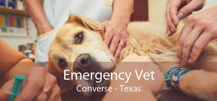Emergency Vet Converse - Texas