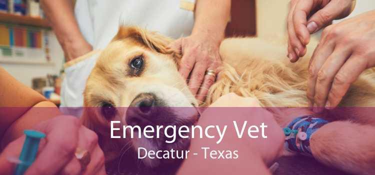 Emergency Vet Decatur - Texas