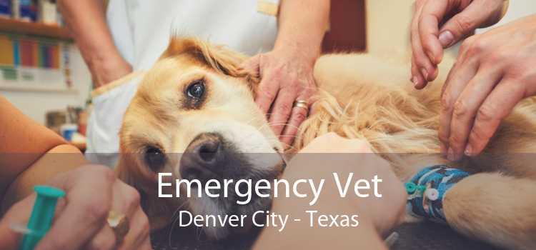 Emergency Vet Denver City - Texas