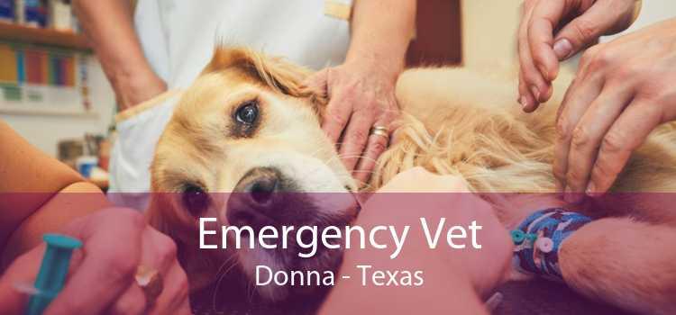 Emergency Vet Donna - Texas