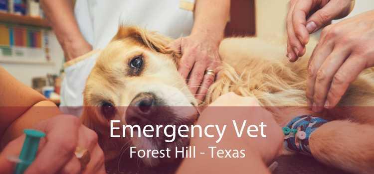 Emergency Vet Forest Hill - Texas
