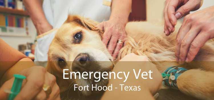 Emergency Vet Fort Hood - Texas