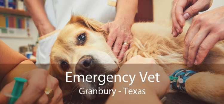 Emergency Vet Granbury - Texas